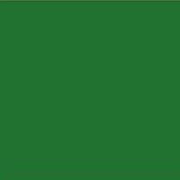 RAL 6000 Patina Green