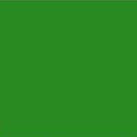 RAL 6018 Yellow Green