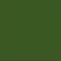 RAL 6025 Fern Green