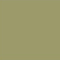 RAL 7002 Olive Grey